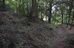 De wal van het heuvelfort in het Bois du Grand Bon Dieu.