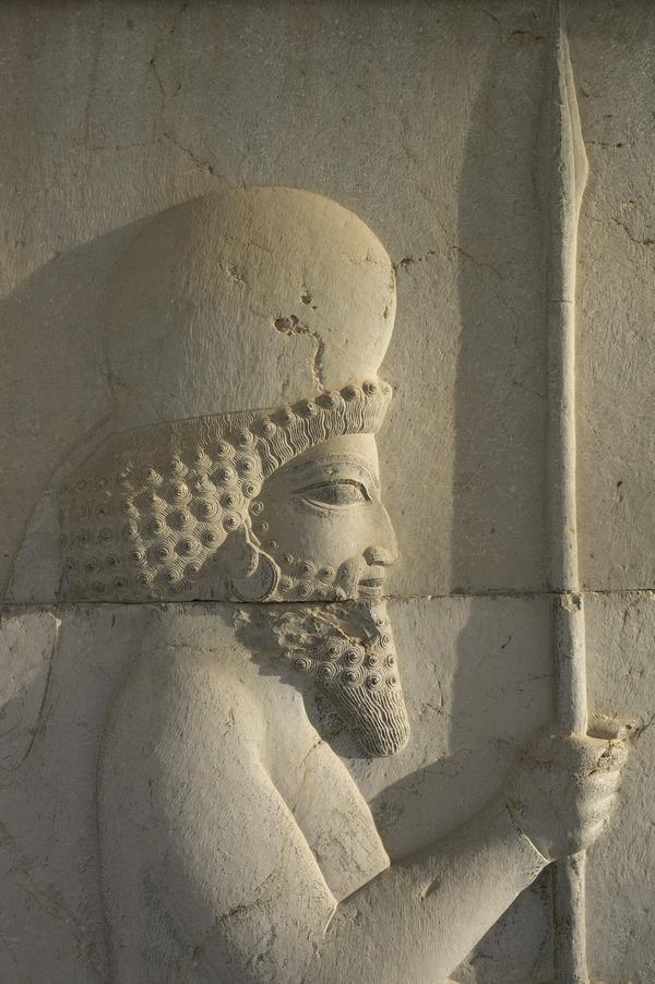 Iraanse soldaat, afgebeeld op een trap in de Tripylon in Persepolis