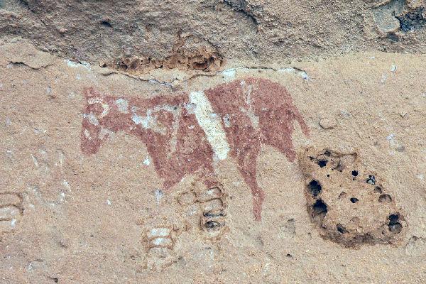 Schildering van een paard (Wadi Imla)
